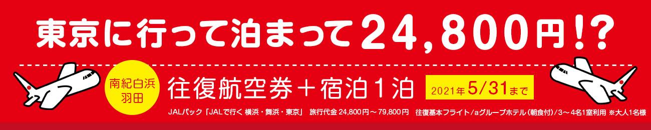 東京に行って泊まって24800円!