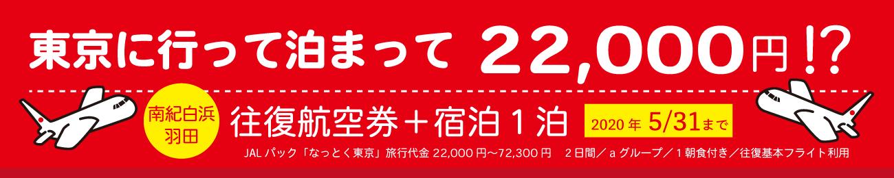 東京に行って泊まって22000円!